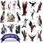AD1025 Birds, Amazing Designs