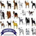 AD1060 Dogs Collection, Amazing Designs