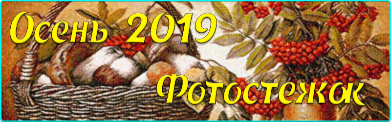 Осений 2019 Фотостежок
