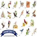AD1086 Birds Collection, Amazing Designs